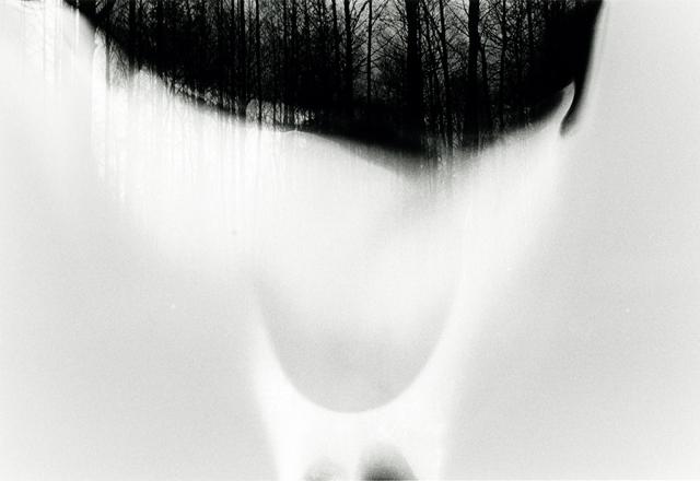 małgorzata stankiewicz cry of an echo